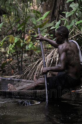 ifnig834 