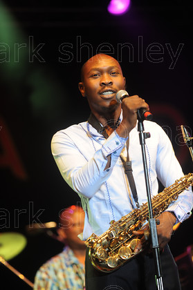 Image kuti001 by Mark Shenley