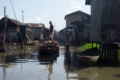 ifnig019 