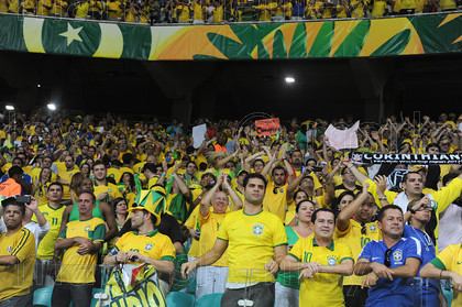 braz067 