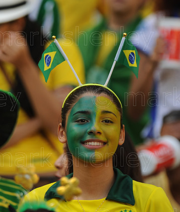 braz044 