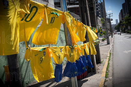braz008 