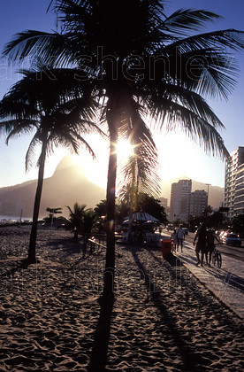 ifbra010 