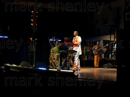 ifnig658 