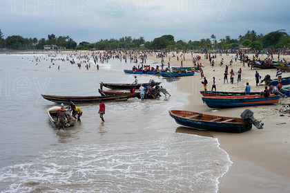 ifnig009 