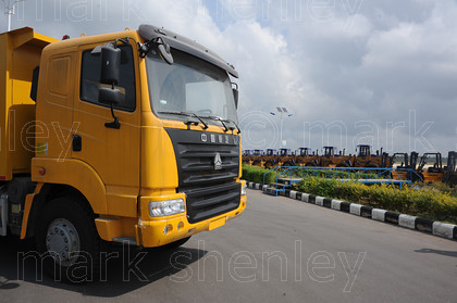 ifnig641 
