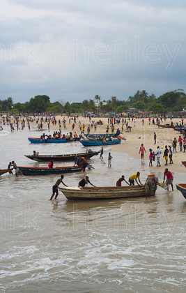 ifnig010 