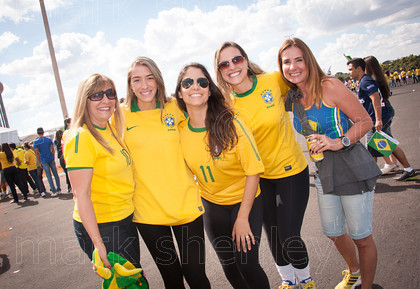 braz029 