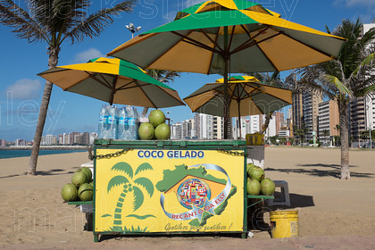 braz015 