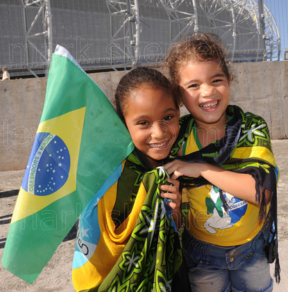 braz042 