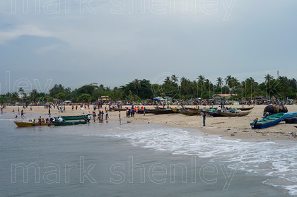 ifnig005 