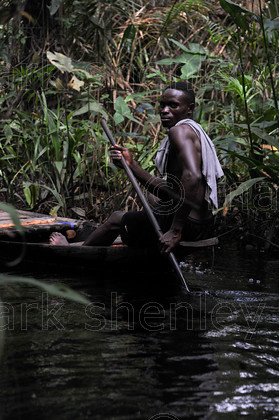 ifnig835 