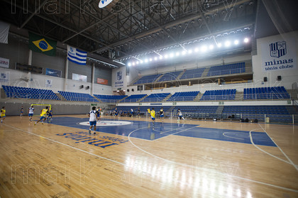 minas010 